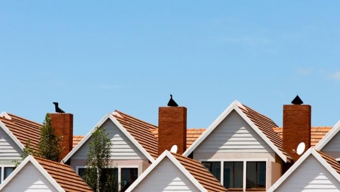Cohousing Affordable Living Arrangement photo photo